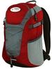 Рюкзак городской Terra Incognita Link 16 красный/серый - фото 1