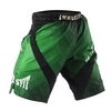 Шорты Peresvit Immortal Fightshorts Green Lantern - фото 2