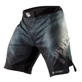 Фото 1 к товару Шорты Peresvit Legend Fightshorts Metallic