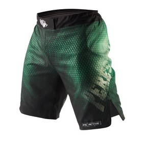 Фото 1 к товару Шорты Peresvit Legend Fightshorts Forrest Green