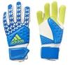 Перчатки вратарские Adidas Ace Zones Pro AH7804 - фото 1