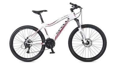 Велосипед горный Spelli FX-6000 Disk 26