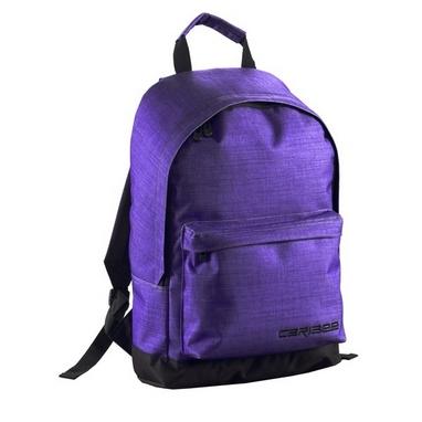 Рюкзак универсальный Caribee Campus 22 Mulberry