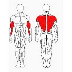 Фото 2 к товару Блок для мышц спины (нижняя тяга) Wuotan GB-02
