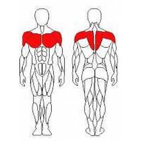 Фото 2 к товару Тренажер для мышц груди и задних дельт Wuotan GB-09