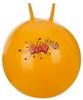 Мяч гимнастический с насосом Torneo Anti-Burst Gymball A-300 (55 см) - фото 1