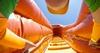 Крепление нагрудное для детей GoPro Jr. Chesty: Chest Harness New - фото 3