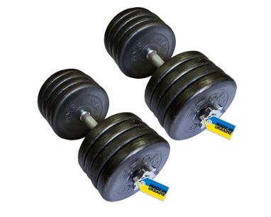 Гантели наборные стальные Newt Home 2 шт по 42 кг + подарок