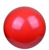 Мяч для фитнеса (фитбол) 55 см Landfit Fitness Ball с насосом - фото 1