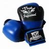 Перчатки боксерские Thai Professional BG7 TPBG7-BK-BL черно-синие - фото 1