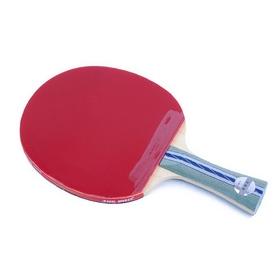 Ракетка для настольного тенниса DHS A5002