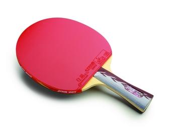 Ракетка для настольного тенниса DHS A4002
