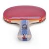 Ракетка для настольного тенниса DHS A6002 - фото 4