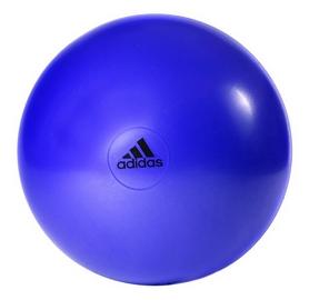 Мяч для фитнеса (фитбол) 55 см Adidas ADBL-13245PL Blue
