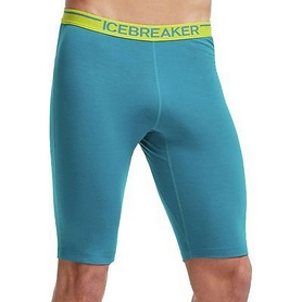 Шорты Icebreaker Zone Shorts Men alpine/chartreuse