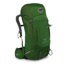 Рюкзак туристический Osprey Kestrel 38 л Jungle Green зеленый M/L