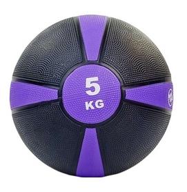 Мяч медицинский (медбол) ZLT FI-5122-5 5 кг фиолетовый