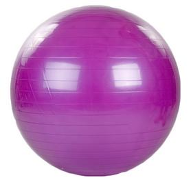 Мяч для фитнеса (фитбол) HMS FI-1982-85-DV 85 см фиолетовый