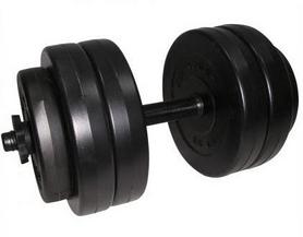 Гантель наборная композитная Newt Rock pro 13 кг
