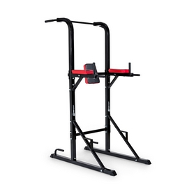 Фитнес станция Workout Hop Sport HS-1004K
