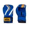 Перчатки боксерские PVC BWS Club синие - фото 1
