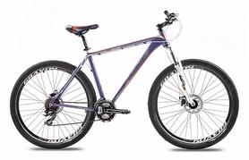 """Велосипед горный Ardis Discovery 29"""" 2016 сине-белый, рама - 21"""""""
