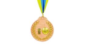 Медаль спортивная ZLT Баскетбол C-4849-3 бронза