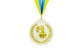 Медаль спортивная ZLT Волейбол C-4850-2 серебро