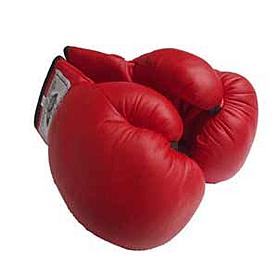 Фото 2 к товару Перчатки боксерские детские PU World Sport