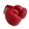 Перчатки боксерские детские PU World Sport - фото 2