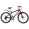 Велосипед горный Winner Viking Disk 17 - фото 1