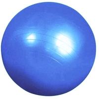 Мяч для фитнеса (фитбол) Pro Supra голубой 55 см