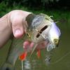 Воблер Jackall Chubby 38 SSR Ghost Wakasagi - фото 2