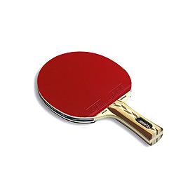 Ракетка для настольного тенниса Atemi 5000C PRO 5* профессиональная экологичная