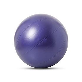 Мяч гимнастический (фитбол) 100 см Togu Pushball ABS фиолетовый