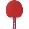 Ракетка для настольного тенниса Kettler Champ 3* (красная) - фото 1