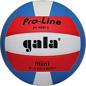 Мяч волейбольный Gala Pro-Line BV4051SAE