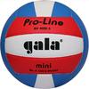 Мяч волейбольный Gala Pro-Line BV4051SAE - фото 1