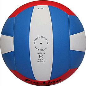 Фото 2 к товару Мяч волейбольный Gala Pro-Line BV4051SAE