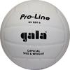 Мяч волейбольный Gala Pro-Line BV5211SAE - фото 1