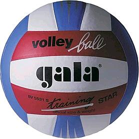 Мяч волейбольный Gala Training BV5531SBE