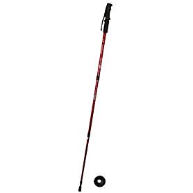 Палка для спортивной ходьбы Energia TY-3924