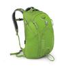 Рюкзак городской Osprey Flare 24 л зеленый - фото 1