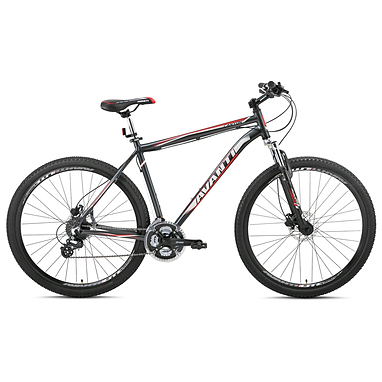 Велосипед горный Avanti Canyon 29ER 29