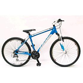Фото 1 к товару Велосипед подростковый горный Focus Raven Rookie 21G 24