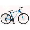 Велосипед подростковый горный Focus Raven Rookie 21G 24