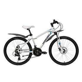 Фото 1 к товару Велосипед подростковый горный NORMAN boy 24