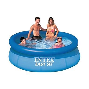 Бассейн надувной Intex Easy Set 28110 (244х76 см)