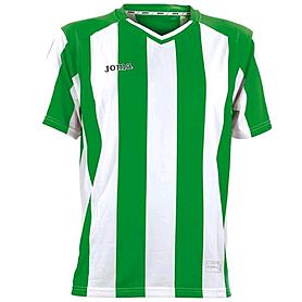 Футболка футбольная Joma Pisa зелено-белая
