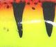 Воблер Rapala Tail Dancer TD05 50мм 6гр - HT